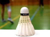 Sparte Badminton